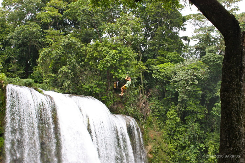 Canopy on the waterfall