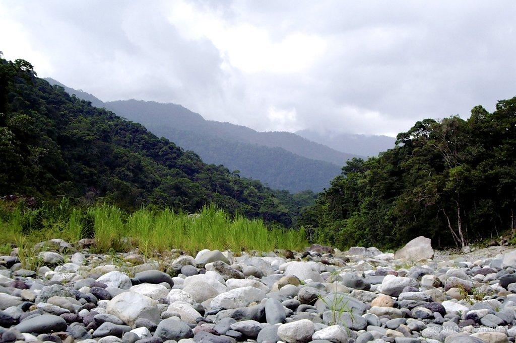 Cangrejal river shore