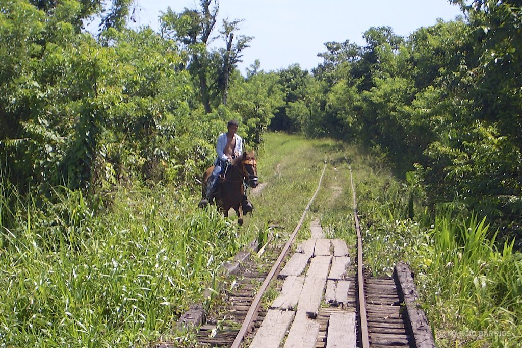 This is the path to arrive to Cuero y Salado, with a small train through this old tracks